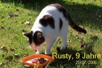 rusty_9_jahre